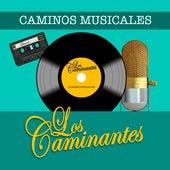 Caminos Musicales de Los Caminantes