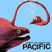 Pacific di Nobodys Face
