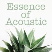 Essence of Acoustic von Various Artists