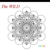 Cube by The Wild