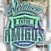 Coletânea Entre Amigos Com César Galone, Vol. 2 von Various Artists