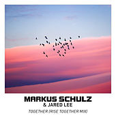 Together by Markus Schulz