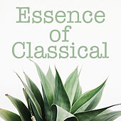 Essence of Classical von Various Artists