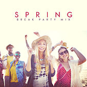 Spring Break Party Mix by Various Artists