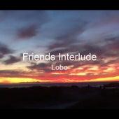 Friends Interlude van Lobo