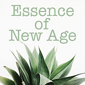 Essence of New Age by Various Artists
