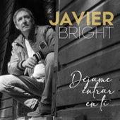 Déjame Entrar en Ti de Javier Bright