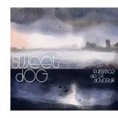 Puissance de la douceur de Sweet Dog