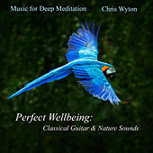 Perfect Wellbeing: Classical Guitar & Nature Sounds von Music For Meditation