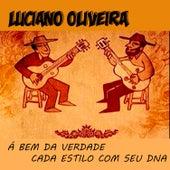 Á Bem da Verdade Cada Estilo Com Seu DNA by Luciano Oliveira
