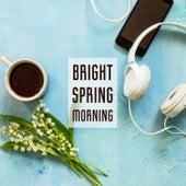 Bright Spring Morning de Various Artists