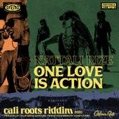 One Love is Action de Nattali Rize
