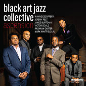 Ascension von Black Art Jazz Collective