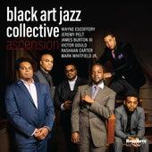 Ascension von Black Art Jazz Collective
