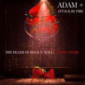 The Death of Rock 'n' Roll: A Love Story by adam