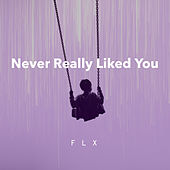Never Really Liked You von Fl-X