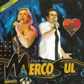 Especial 10 Anos Ao Vivo von Banda Mercosul