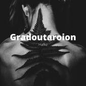 Gradoutaroion de Hafkz