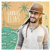 Gabriel Elias de Gabriel Elias