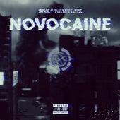 Novocaine (feat. Remtrex) de jaykae