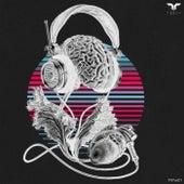 Tanta Music VA 001 by Various Artists