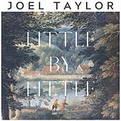Little by Little von Joel Taylor
