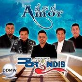 Asi Es el Amor by Grupo Bryndis