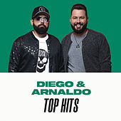 Diego & Arnaldo Top Hits de Diego & Arnaldo