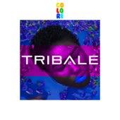 T R I B A L E 2 van Various Artists