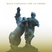 Mille cannucce con lo snodo by C'sar