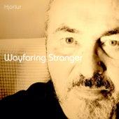 Wayfaring Stranger by Hjortur