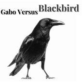 Blackbird by Gabo Versus