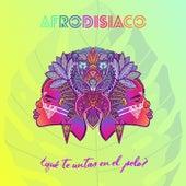 Qué Te Untas en el Pelo? by Afrodisíaco