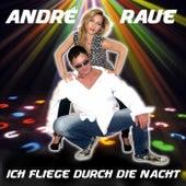 Ich fliege durch die Nacht von André Raue