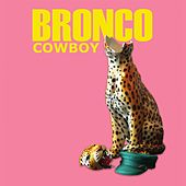 Cowboy de Bronco