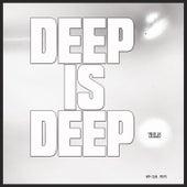 Deep is Deep, Vol. 5 de Various Artists