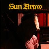 The Phynx by Sun Araw
