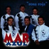 Rosa Roja by Mar Azul