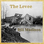 The Levee by Bill Madison