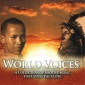 World Voices de Global Journey