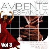 Musica Ambiente Española .Flauta, Guitarra y Compas Flamenco. Vol 3 by Diego Carrasco