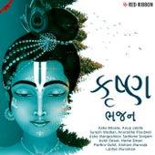 Krishna Bhajan by Amar Khandha