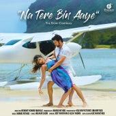 Na Tere Bin Aaye by Udit Narayan