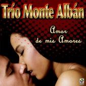 Amor De Mis Amores by Trio Montealban