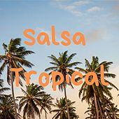 Salsa Tropical de Joe Arroyo, José Alberto El Canario, Sonora Carruseles, Willie Colon