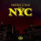 Scion A/V Presents Trouble & Bass: Sounds of NYC von Various Artists