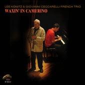 Waxin' In Camerino by Lee Konitz