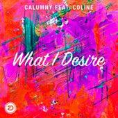 What I Desire de Calumny