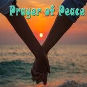 Prayer of Peace de Various Artists
