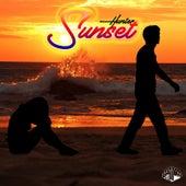 Sunset de Hunter